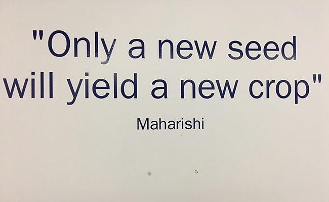 Maharishi quote