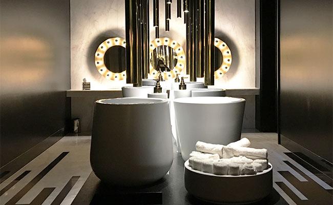 amazing washroom design